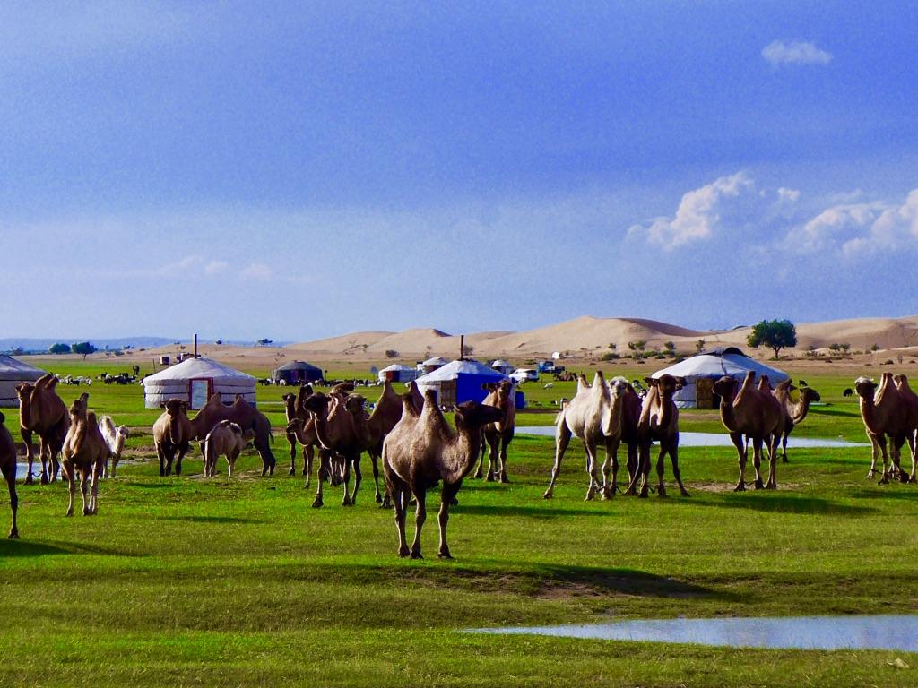 Authentische Erlebnisreisen in die Mongolei. Authentische Reise in die Mongolei. Luxusreisen Mongolei. Authentische nomadische Kultur erleben.